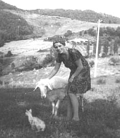 1976 - with Sofie, our first sheep