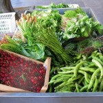 asparagus,-cherries-and-other