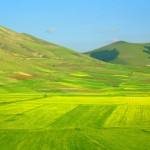 View-from-Castelluccio