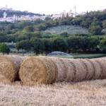 Gigantic-bales-in-Assisi-field